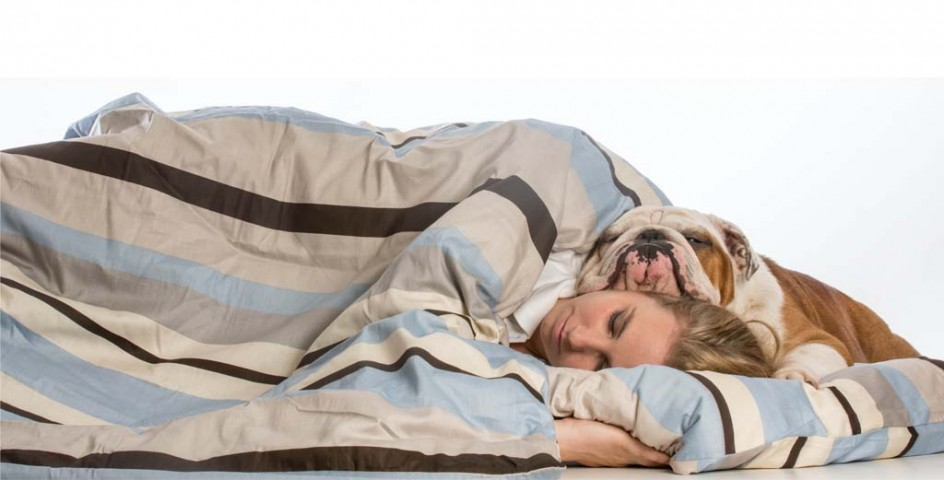 Pet Owner Illness - Caring for Pets When Sick